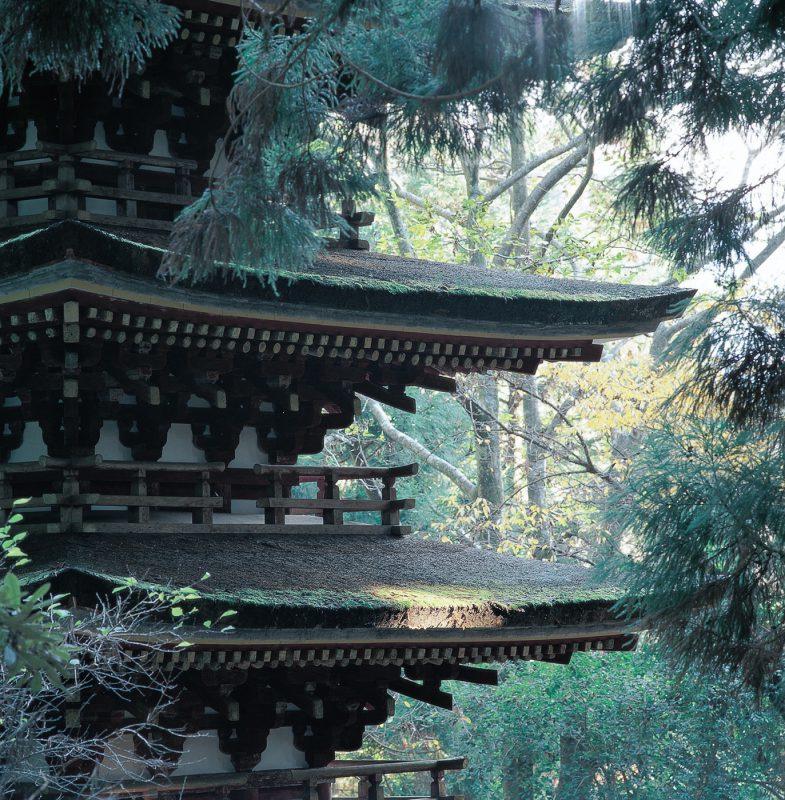 奈良・室生寺にて