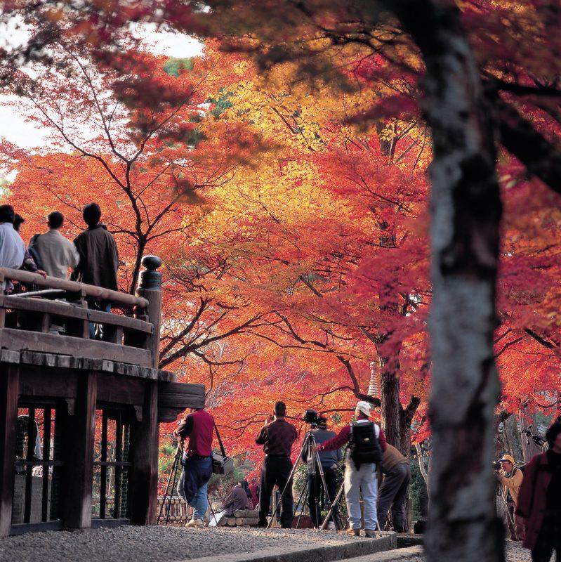 京都・東山にて