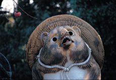 津和野の狸